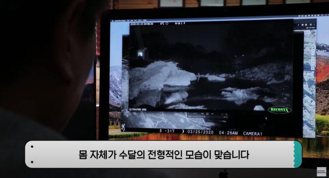 삼성전자 반도체 공장인 기흥사업장 인근 오산천에서 지난달 천연기념물인 수달 한 마리가 발견된 데 이어 최근에 추가로 한 마리가 더 발견된 것으로 확인됐다. 사진은 수달이 포착된 모습. 삼성전자 유튜브 캡처