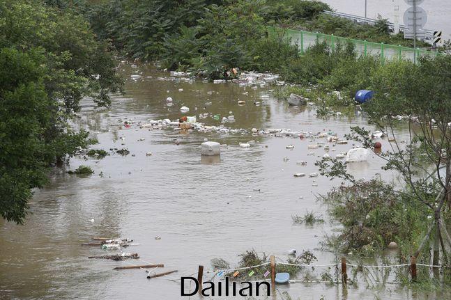 연일 계속되는 집중호우로 인한 팔당댐, 소양강댐의 방류로 한강 수위가 상승해 한강대교에 9년 만에 홍수주의보가 발령됐던 지난 6일 오후 서울 용산구 이촌한강공원이 물에 잠겨 있다. ⓒ데일리안 류영주 기자