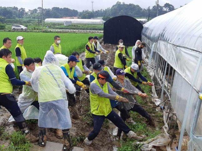 NH농협은행 중앙본부 임직원들이 11일 경기도 이천시 집중호우 피해 지역을 방문해 폭우로 침수된 비닐하우스 피해시설을 찾아 복구 작업을 벌이고 있다.ⓒNH농협은행