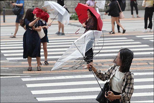 서울 관악구 사당역 주변에서 한 시민이 태풍의 영향으로 부서진 우산을 보고 있다. ⓒ데일리안 류영주 기자