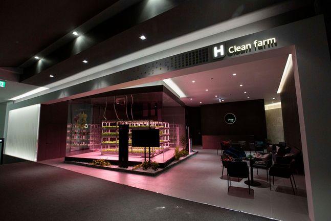 현대건설 스마트팜 시스템인 H 클린팜 ⓒ현대건설