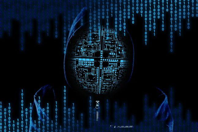 신종 코로나바이러스 감염증 사태를 계기로 비대면을 선호하는 언택트 문화가 빠르게 확산되면서, 온라인 보안 리스크에 대비하기 위한 사이버보험 수요가 더욱 확대될 것으로 보인다.ⓒ픽사베이