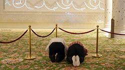 아랍에미리트 종교, 이슬람이 궁금하다고?