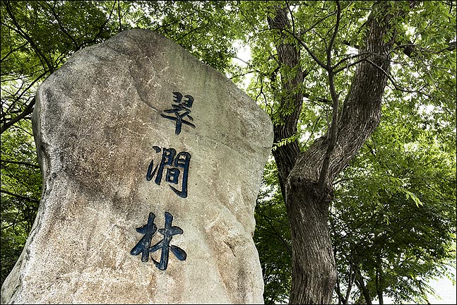 [이창수의 지리산 산책 ⑨] 푸른 물빛의 산골 물옆 숲 '취간림'