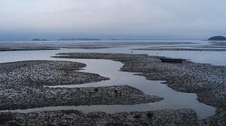 [기고] 갯벌의 지속가능한 보전과 이용, 디테일에 달려있다