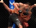[UFC] '대항마' 돌아온 괴물 퍼거슨, 건재 과시하나