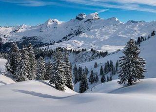 프랑스 스키 리조트 머물던 영국인 5명…신종 코로나 확진 판정