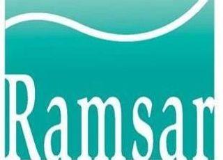 고창·서천갯벌·서귀포습지…'람사르습지도시' 국제 인증 신청