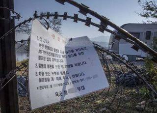 화천·연천 멧돼지 폐사체 5개체서 ASF 바이러스 검출