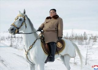"""'김정은 건강이상설', 정부는 """"특이동향 없다""""는데…탈북인사들 """"1월부터 소문 돌았다"""""""