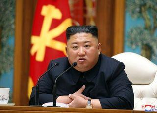 '김정은 신변 이상설', 정부가 '특이동향' 강조하는 이유는?