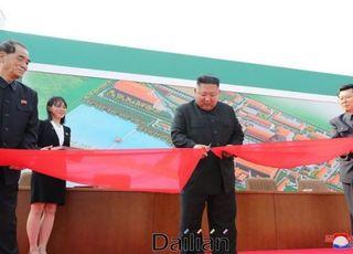[특징주] 방산주, 北 김정은 활동 재개에 동반 하락