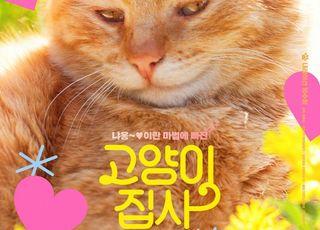[D:소소한 영화관] 냥이와 사랑에 빠지는 방법…'고양이집사'