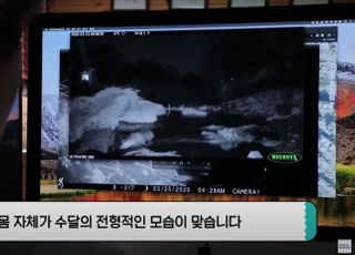"""삼성전자 반도체 공장 근처에 '수달'이?…""""하천 수질 개선"""""""