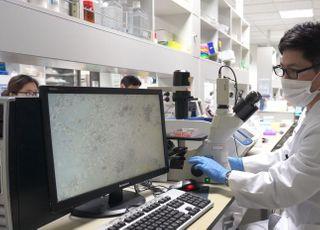 셀트리온, 코로나19 항체 치료제 동물시험 첫 단계 성공