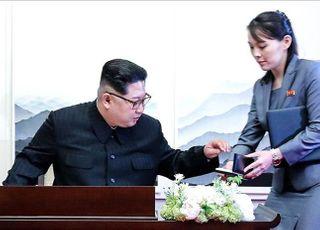 """김여정""""대북전단 조치 안 하면 남북 군사합의 파기"""" 경고"""