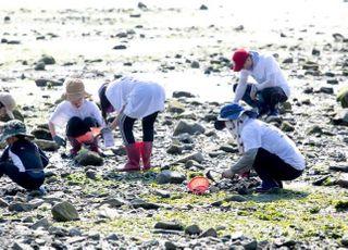 해수부-한국어촌어항공단, 어촌체험마을 보험상품 가입 지원