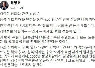 """태영호 """"김여정 담화, 무기 공개나 도발 전주곡일 수도"""""""