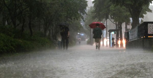 역대 최장 장마 온다...'폭우 테마주' 주의보