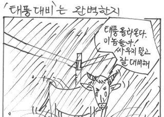[시사만평] 태풍 '장미' 온다…여당의 폭주 잠시 스톱해라