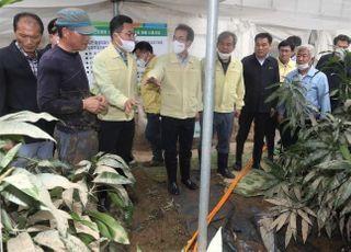 농협, 집중호우 피해 지원에 조직역량 집중