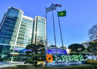 [기업이 뛴다-14] 농협금융, 디지털·글로벌 역량 업그레이드 사활