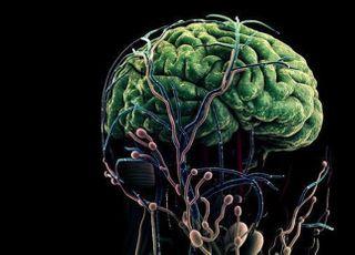 이재용의 삼성, '알츠하이머' 정복 나선다