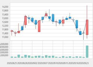 [특징주] 크래프톤 IPO 추진에 관련주 이틀째 급등