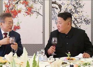 """청와대 """"문대통령-김정은, 최근 친서 교환"""""""