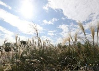 [내일날씨] 전국 맑고 10도 이상 일교차… 낮 최고기온 26도