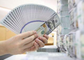 9월 외환보유액 4205.5억 달러…전월比 15.9억 달러↑