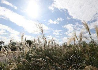 [오늘날씨] 전국 맑고 선선한 날씨…큰 일교차 주의