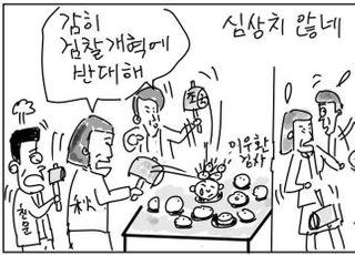 [D-시사만평] 원인제공자 추미애의 폭주…'커밍아웃 검란'