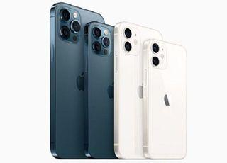 애플, 3Q 실적 기대치는 넘겼으나...아이폰 판매는 '글쎄'
